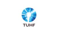 tuhf case study - Logical Truth - TUHF Values Surfacing